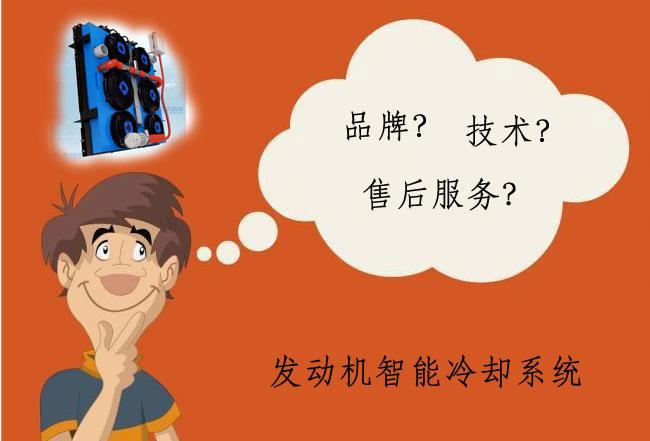 发动机智能冷却系统哪个品牌好